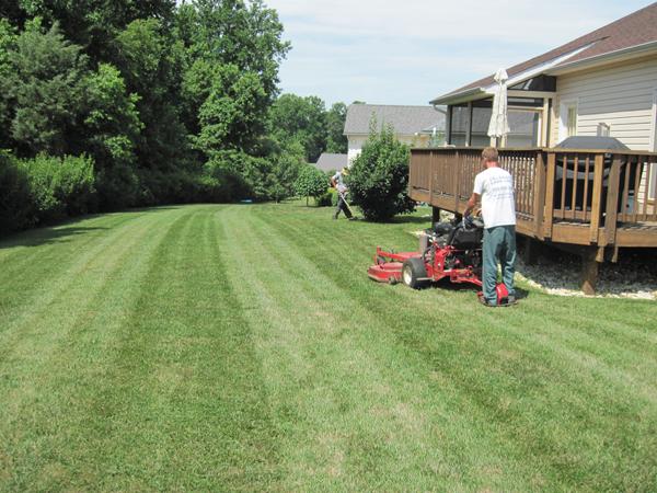 Delaware Lawn Crew Services